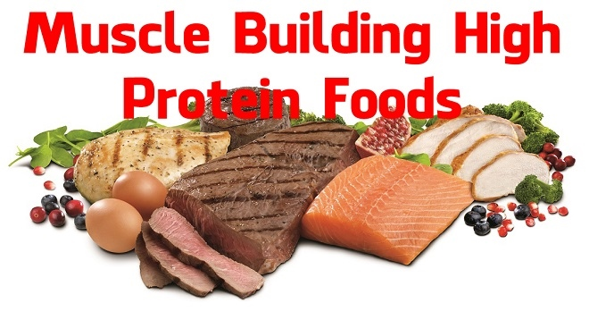 Muscle-Building-High-Protein-Foods1