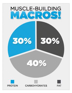 muscle-building-macros-c